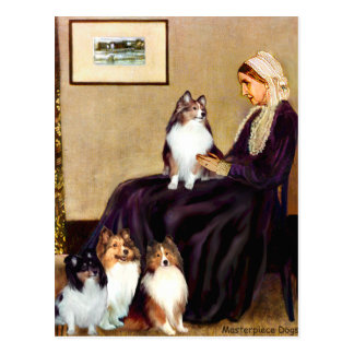 Shetland Sheepdogs (four) - Whistlers Mother Postcard