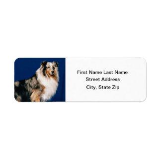 Shetlie (Merle) Return Address Label