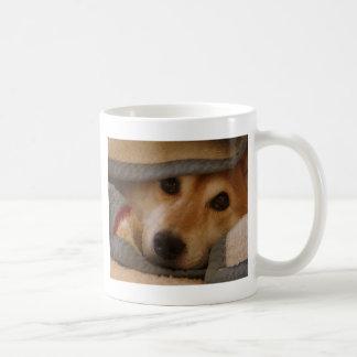 Shiba in a Blanket Mug