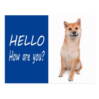 Shiba Inu Puppy Dog Greeting Post Card
