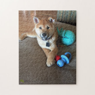 Shiba Inu Puppy With Colorful Toys Photograph Jigsaw Puzzle