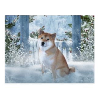 Shiba Inu Winter Postcard