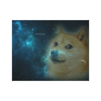 shibe doge in space stretched canvas print