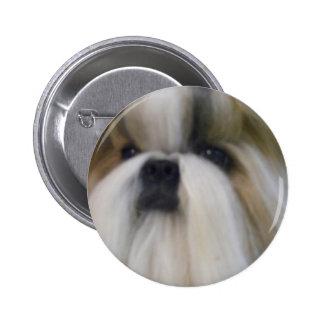 Shih Tzu 6 Cm Round Badge