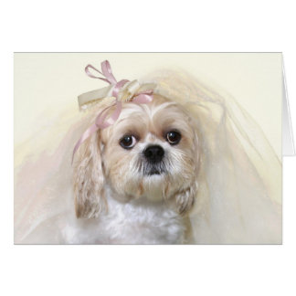Shih Tzu Bride Card