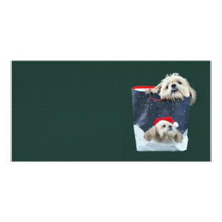 Shih Tzu Christmas gift Photo Card Template