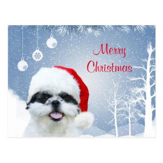 Shih Tzu Christmas Postcard