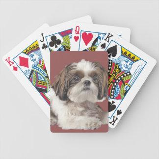 Shih Tzu Cuteness Poker Deck