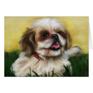Shih Tzu Dog Art - Sophie Card