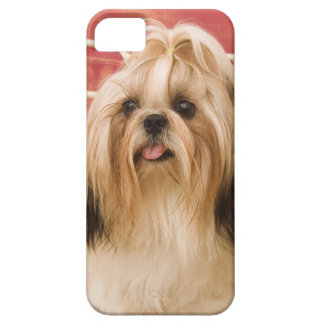 Shih-tzu dog barely there iPhone 5 case