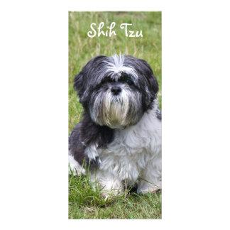 Shih Tzu dog beautiful cute photo bookmark Rack Card