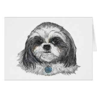 Shih Tzu Dog Blank Card