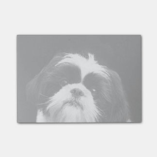 Shih Tzu dog post it notes