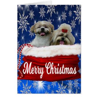 Shih tzu Greeting Card Christmas
