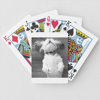Shih Tzu Nap Bicycle Playing Cards