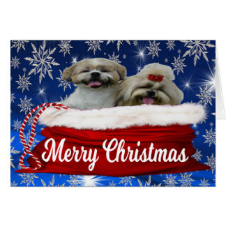 Shih tzu Notecard, Christmas Card
