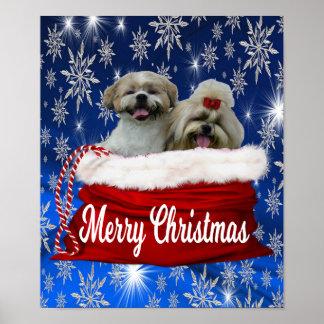 Shih tzu Poster Christmas