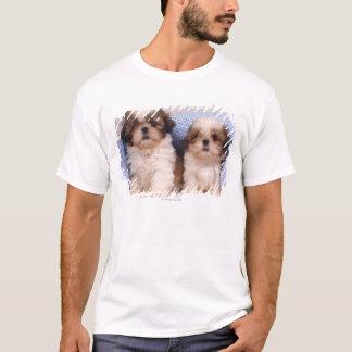 Shih Tzu puppies under a checked blanket T-Shirt