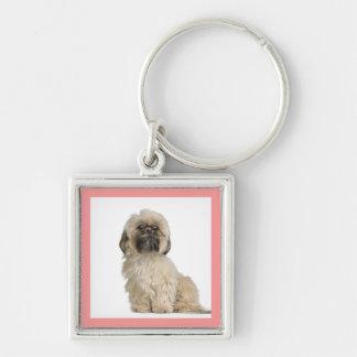 Shih Tzu Puppy Dog Custom Keychain