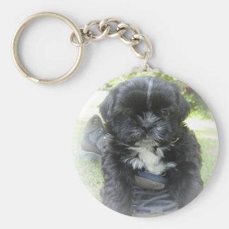 Shih Tzu Puppy Key Chain