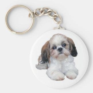 Shih Tzu Puppy Keychain