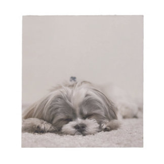 Shih tzu Sleeping Notepad , Sleeping Dog