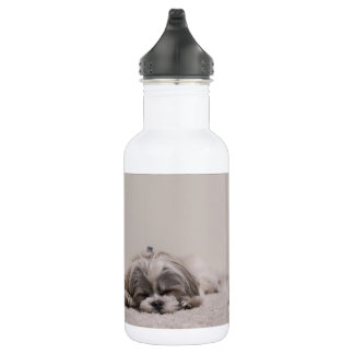 Shih tzu Sleeping Water Bottle, Sleeping Dog 532 Ml Water Bottle