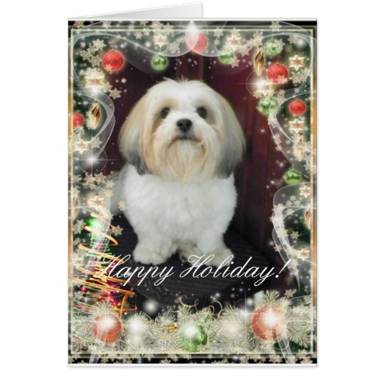 ShihTzu Christmas Card