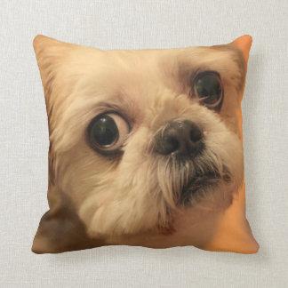 Shihtzu Cushion