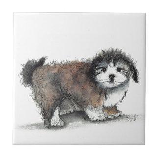 Shihtzu Puppy Dog, Pet Ceramic Tile