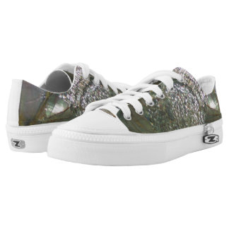 Shimmering Abalone Seashell, Beautiful Nature Low Tops