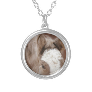 Shimmering Dreams Silver Plated Necklace