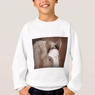 Shimmering Dreams Sweatshirt