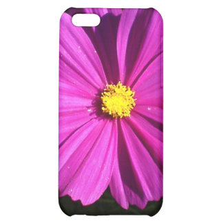 Shine iPhone 5C Cover