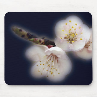 shining in moonlight mouse pad