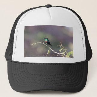 Shining Sunbird (Cinnyris habessinicus) Trucker Hat