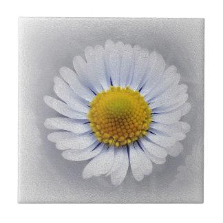 shining white daisy ceramic tile