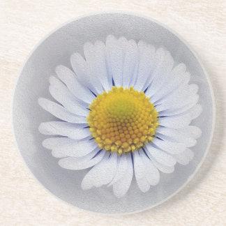 shining white daisy coaster