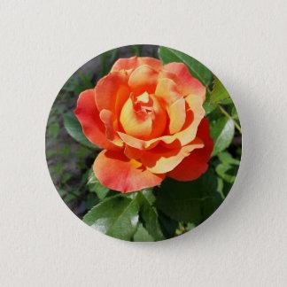 shining yellow rose 6 cm round badge