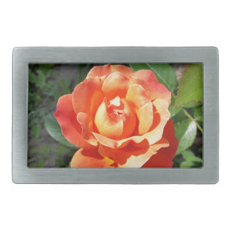 shining yellow rose belt buckle