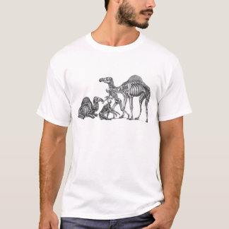 Ship of the Desert - Skeleton Camels At Rest T-Shirt
