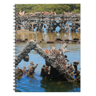 Shipwreck in the mangroves spiral notebook