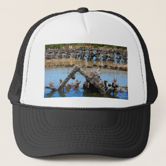 Shipwreck in the mangroves trucker hat