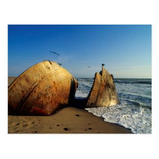 Shipwreck On Beach, Skeleton Coast, Namibia Postcard