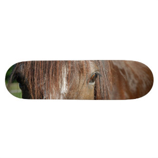 shire skate boards
