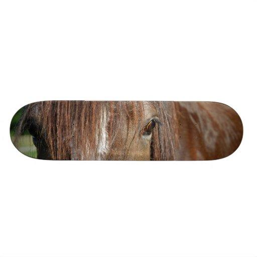 shire skate board deck