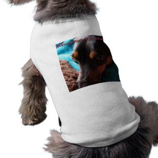 Shirt for miniature pin shear photograph entrance