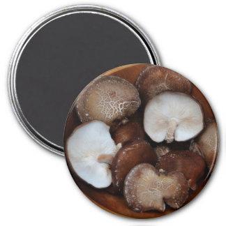 Shitake Mushrooms Magnet