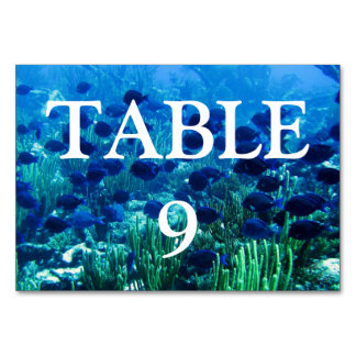 Shoal of Blue Discus Fish Card
