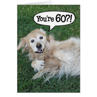 Shocked Golden Retriever 60th Birthday Card